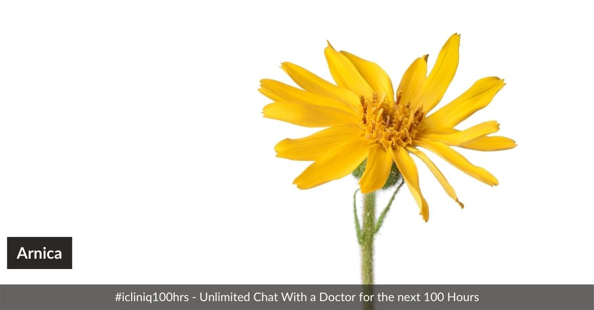 Arnica - More Than a Muscle Healer