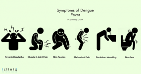 Dengue Fever: Common Questions Answered