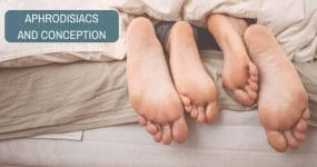 How foreplay is important in conception? Aphrodisiacs and Conception