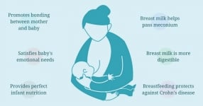 Benefits of Breastfeeding and a Few Tips to New Mothers
