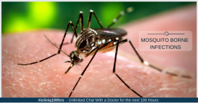 Preventing Mosquito-Borne Infections