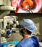 Dr. Tarek Saad Shoala