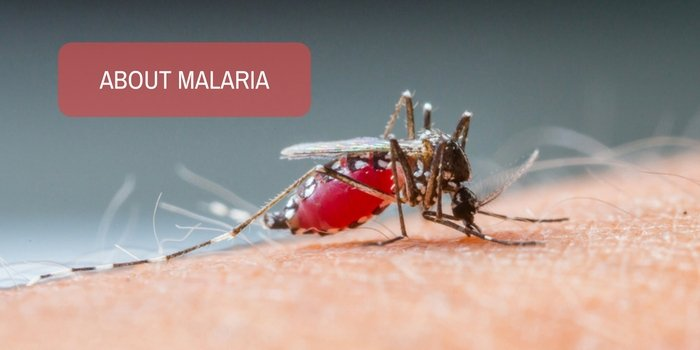 Could elevated CPK value be related to malaria?