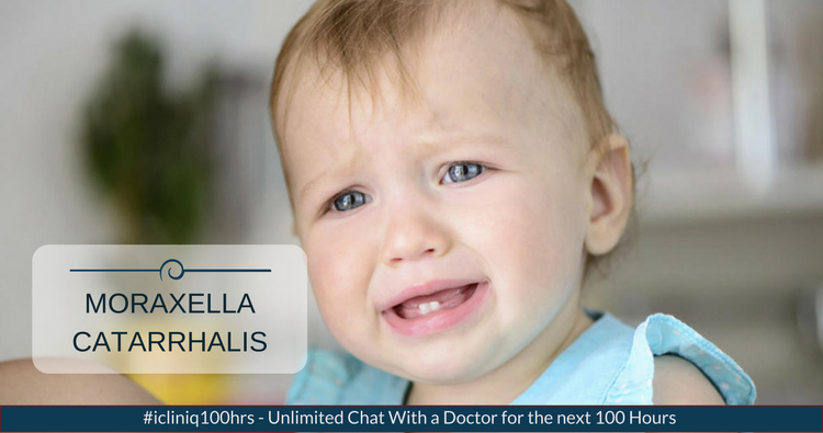 How to cure Moraxella catarrhalis infection?