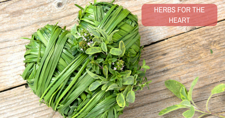 What herb should I take to prevent heart disease?
